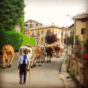 vacanze in Valmalenco
